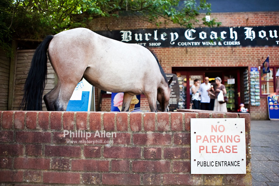 On to the eighth and final stop of the day in the New Forest village of Burley. Some local cowboy is asking for a parking ticket.